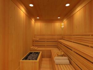 Сауна и баня в чем разница
