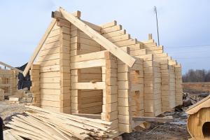 построить баню из осины своими руками