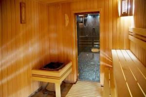 построить баню по финской технологии