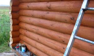 Чем можно обработать сруб бани снаружи и внутри